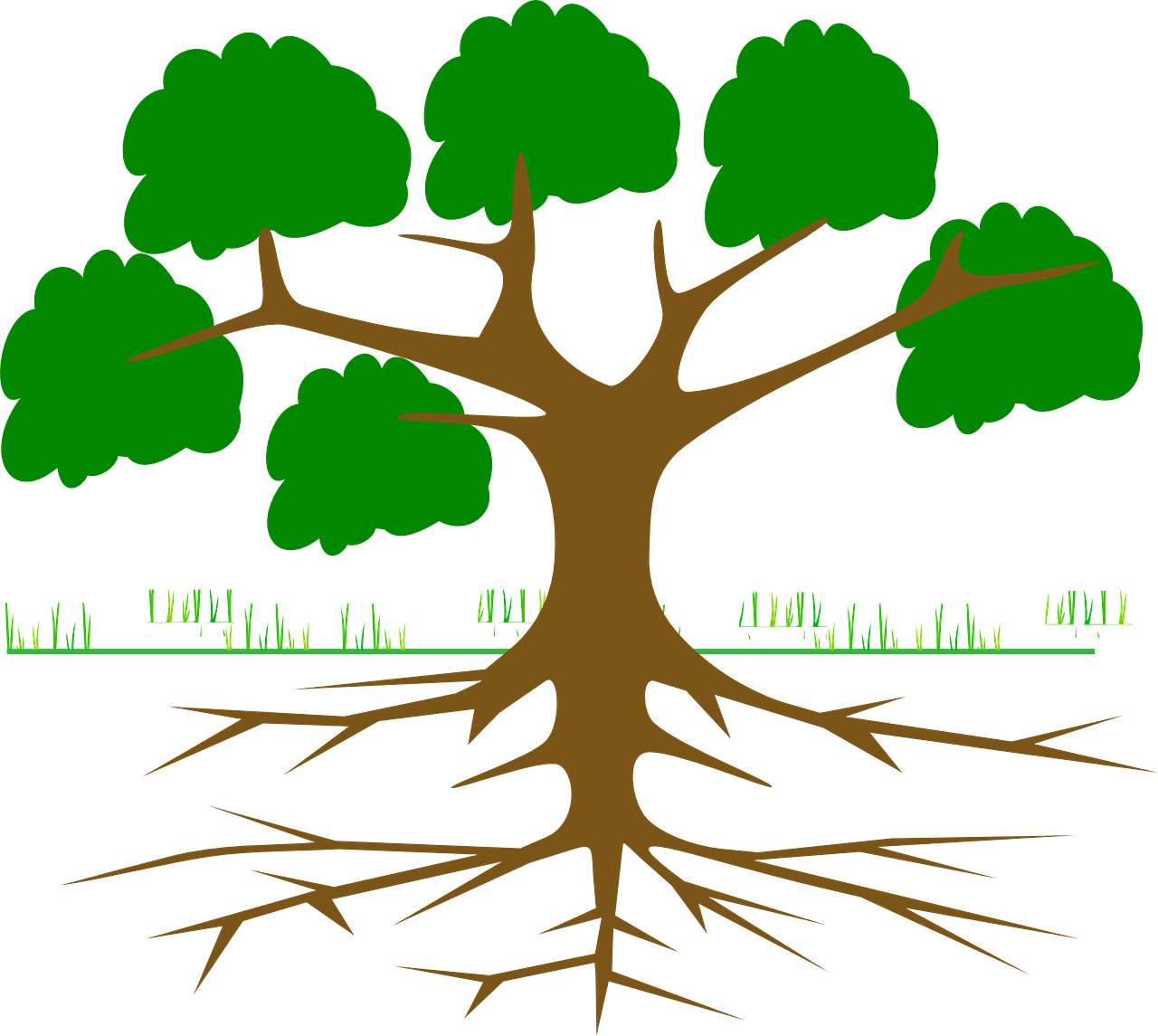 tree and graphs A minimum spanning tree (mst) of an edge-weighted graph is a spanning tree whose weight  we represent edge-weighted graphs using the following api.